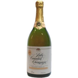 Baby Canadian Champagne Rose 1500ml