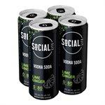 Social Lite Lime Ginger 4 C