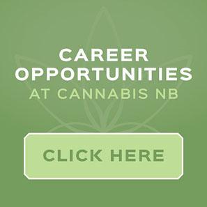 CNB-Careers-EN1