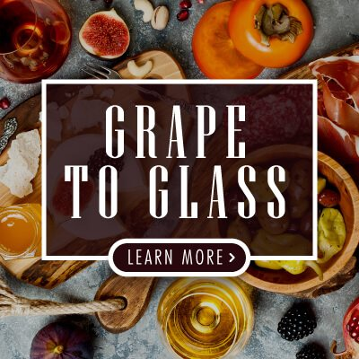 Grape-to-Glass-CONTENT-EN-O