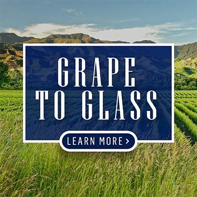 P4-GrapeToGlass-BLOCK-CTA-ENG