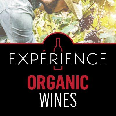 P5-Experience-ContentBlock-OrganicWines-EN