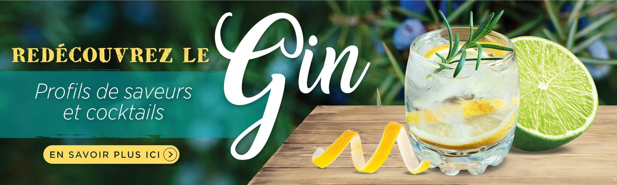 Rediscover-Gin-SLIDER-FR